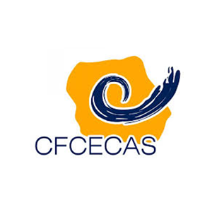 Centre for Training and Assessment in Social Work (CFCECAS)